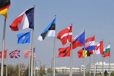 Beynəlxalq təşkilatlardan Azərbaycan hakimiyyətinə